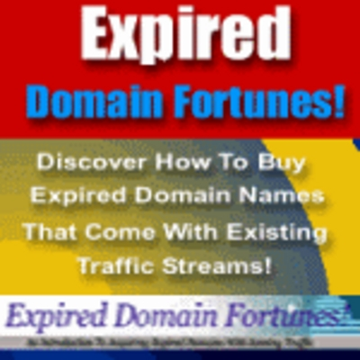 Product picture expired domain fortunes/online business